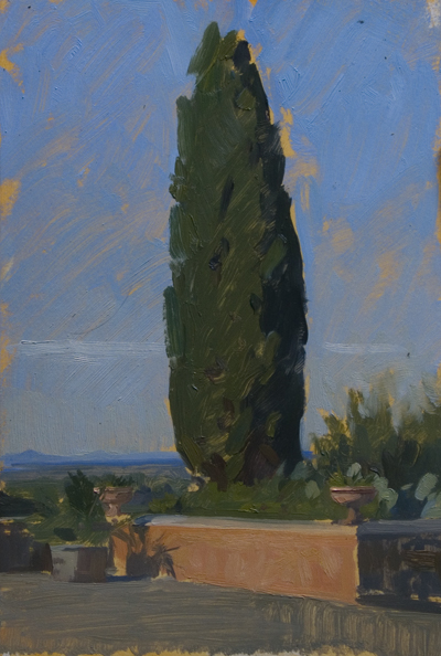 Cypress at Biserno
