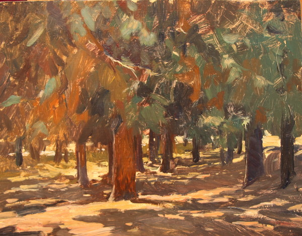 Pines at Griffith Park. 8 x 10 in., oil on panel.