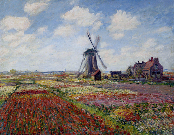 Monet rijnsburg windmill Blossoms and Tulips