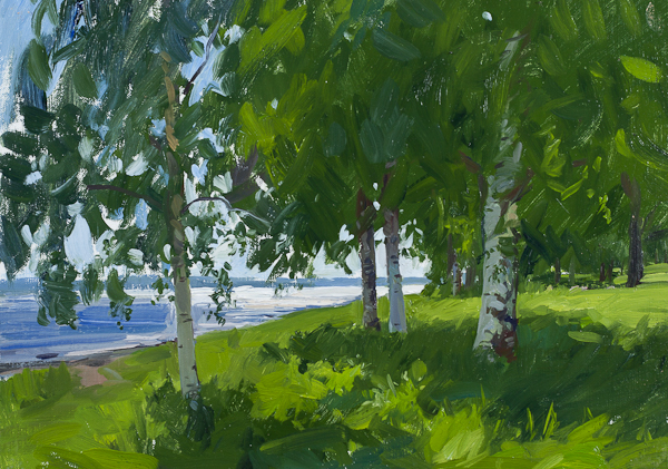 Plein air landscape painting of Birch Trees on the Banks of Lake Siljan, Sweden.
