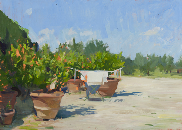 Plein air sketch of laundry and lemon trees, Tuscany.