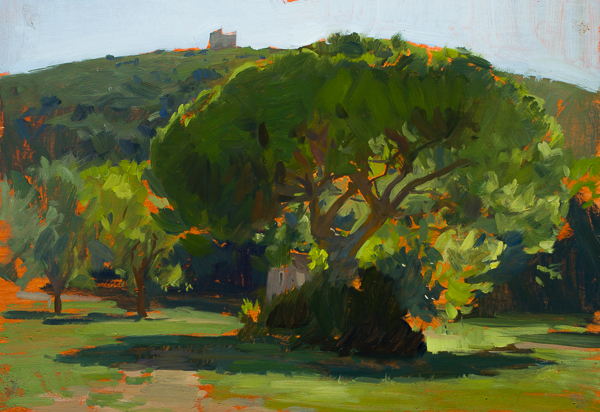 Plein air painting of a stone pine tree in cala di forno, maremma.