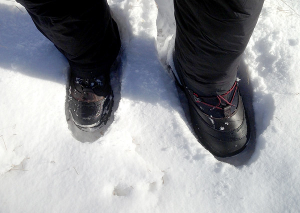 Image showing the size difference between Harkila Inuit pac-boots and normal insulated winter boots.