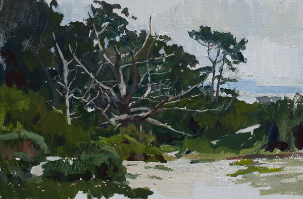 Plein air painting of the dunes at Carmel Beach.