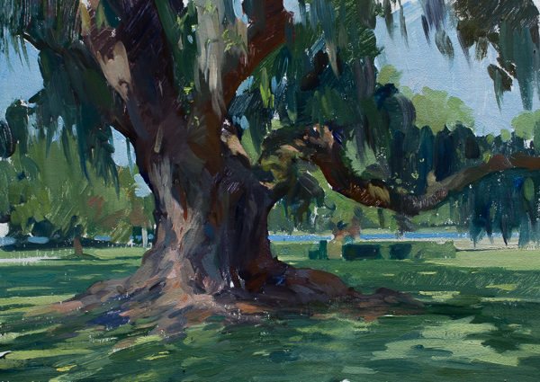 Plein air painting of a large oak tree.
