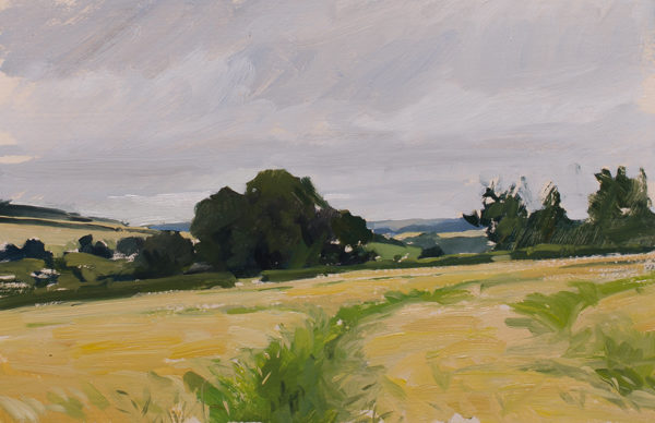plein air painting of barley fields above Tisbury in Wiltshire.