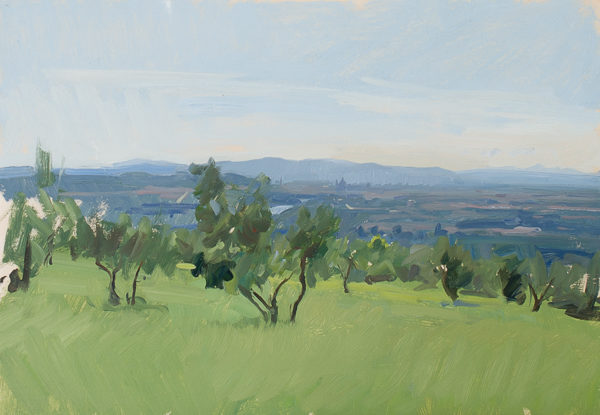 Plein air painting of olive trees above Florence.