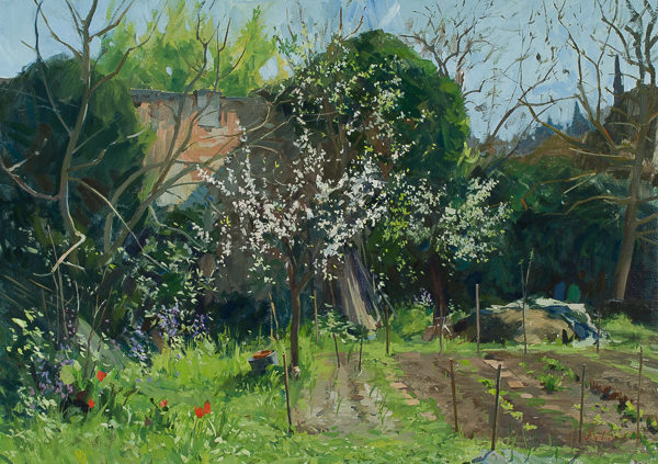 Plein air landscape painting of fruit trees in bloom.