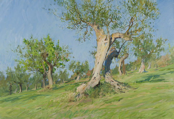 Oil painting of an old olive tree in Tuscany.